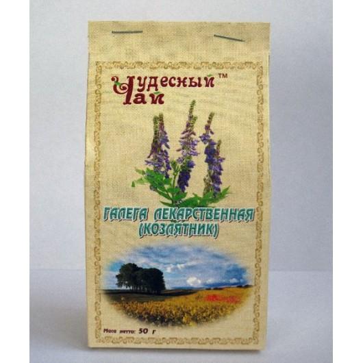 Галега лекарственная ( трава козлятник )
